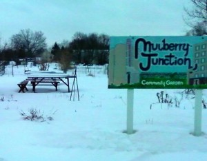 Mulberry Junction Garden during the winter