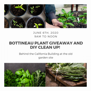 Plant Give Away